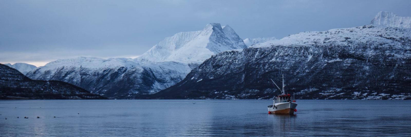Huile de foie de morue naturelle de Norvège