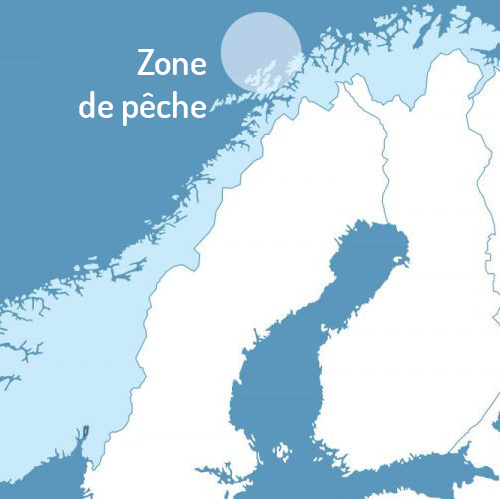 Zone de pêche huile de foie de morue liquide Arktis